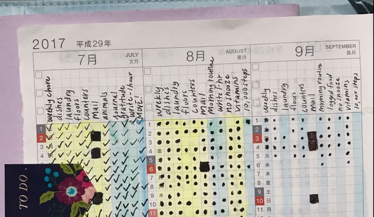 yearly hobonichi overview